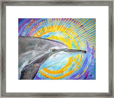 Dolphin Ray Framed Print by Tamara Tavernier