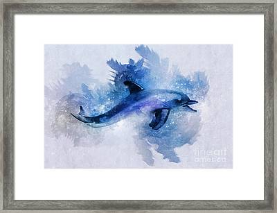 Dolphins Freedom Framed Print