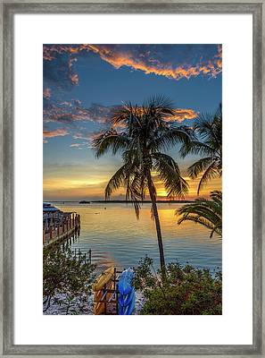 Framed Print featuring the photograph Dolphins In San Carlos Bay by Steven Sparks