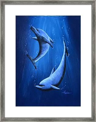 Dolphins Framed Print by Roberta Landers