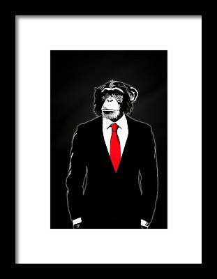 Monkey Framed Prints