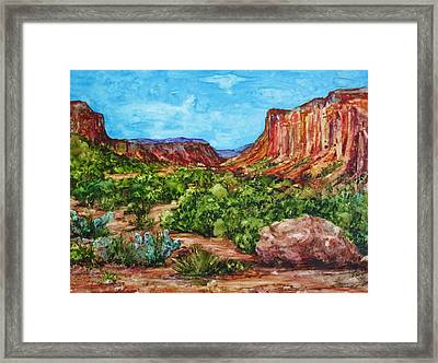 Dominguez Canyon Framed Print