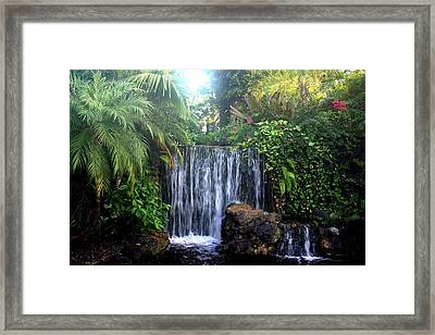 Dominica Framed Print