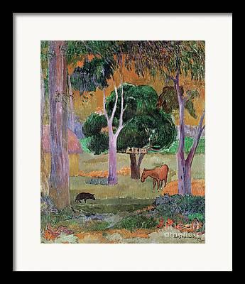 Dominican Landscape Or Framed Prints