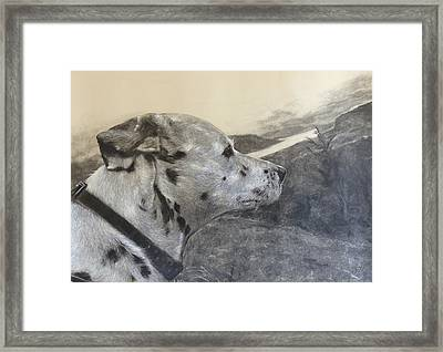 Domino Framed Print by Adrienne Martino