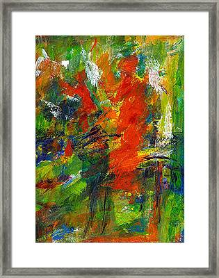 Don Quichotte 2 Framed Print by Jan Daniels