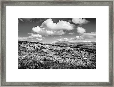Donegal Scene    Framed Print
