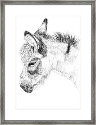 Donkey 2 Framed Print by Keran Sunaski Gilmore