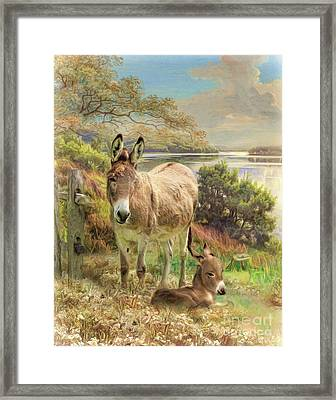 Framed Print featuring the digital art  Donkey And Foal by Trudi Simmonds