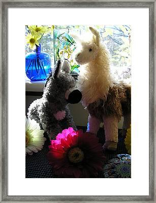Donkey Joti And Dali Llama Framed Print by Christina Gardner