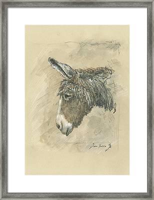 Donkey Portrait Framed Print