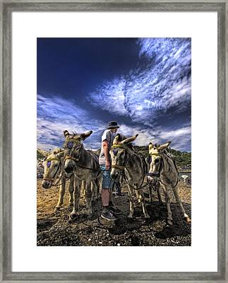 Donkey Rides Framed Print by Meirion Matthias