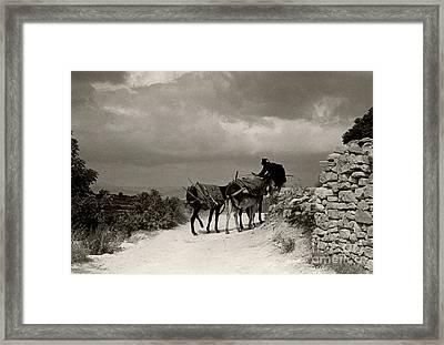 Donkey Woman Framed Print by Andrea Simon