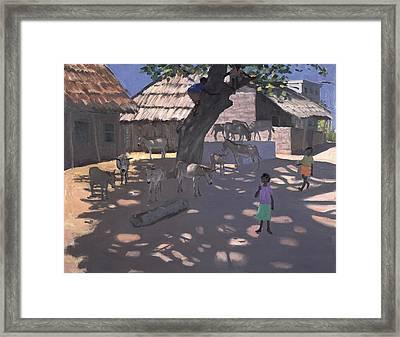 Donkeys Lamu Kenya Framed Print by Andrew Macara