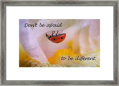 Don't Be Afraid Framed Print by Elena E Giorgi