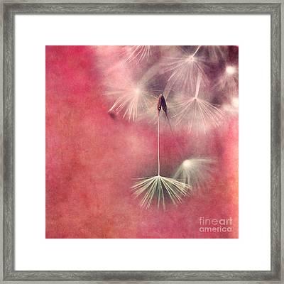 Don't Be Afraid To Let Go Framed Print by Priska Wettstein