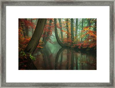 Live Your Dream Framed Print by Martin Podt