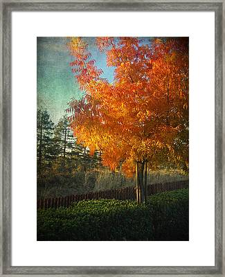 Don't Ever Let Go Framed Print by Laurie Search