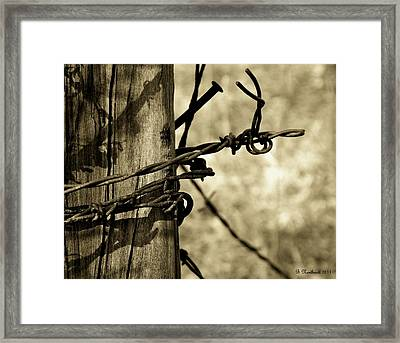 Don't Fence Me In 2 Framed Print by Betty Northcutt