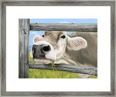 Don't Fence Me In Framed Print by Sarah Batalka