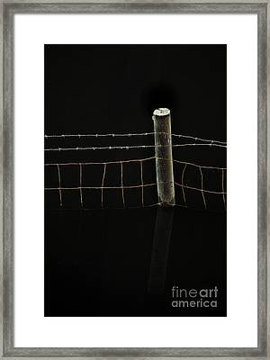 Don't Fence Me In Framed Print