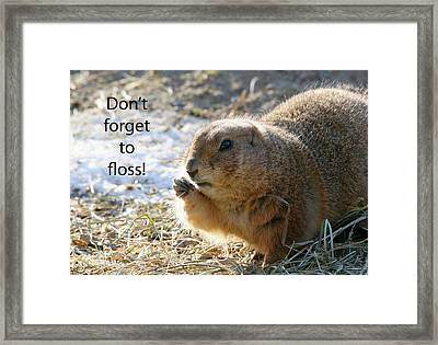 Dont Forget To Floss Framed Print by Karol Livote