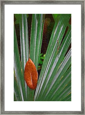 Framed Print featuring the photograph Don't Leaf by Donna Bentley
