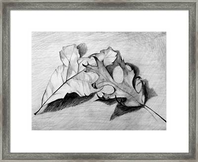 Framed Print featuring the drawing Don't Leaf Me by Jean Haynes
