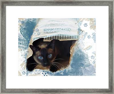 Don't Let The Cat Out Of The Bag Framed Print