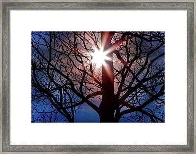 Don't Lose Sight Of It All Framed Print by Karen Wiles
