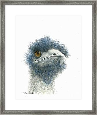 Dont Mess With Emu Framed Print