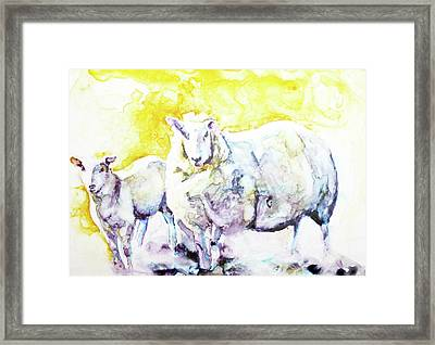Don't Mess With My Lamb Framed Print