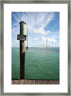 Framed Print featuring the photograph Don't Please The Pelicans by Barbara MacPhail