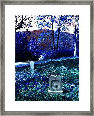 Dont Point Framed Print by Lee M Plate
