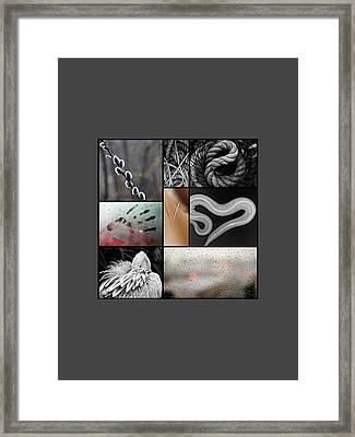 Don't Press Your Luck Framed Print