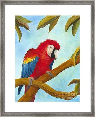 Dont Ruffle My Feathers Framed Print