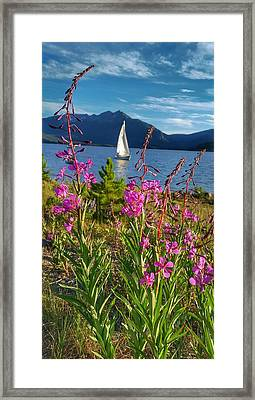 Don't Rush A Good Thing Framed Print by Fiona Kennard