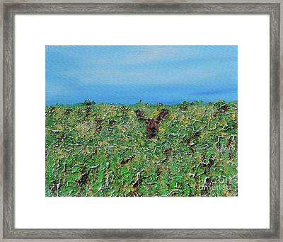 Dont Shoot Framed Print by Alys Caviness-Gober