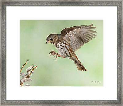 Don't Squeeze The Charmin Framed Print by Gerry Sibell