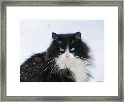 Framed Print featuring the pyrography Don't Touch Me - It Is Not Necessary by Yury Bashkin