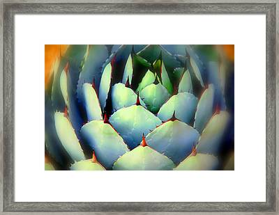 Dont Touch Me Framed Print