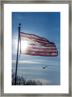 Dont Tread On Me Framed Print by Chris Bordeleau