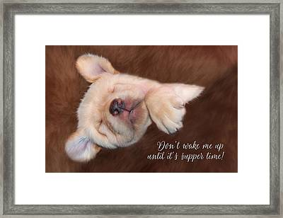 Don't Wake Me Up Framed Print by Lori Deiter