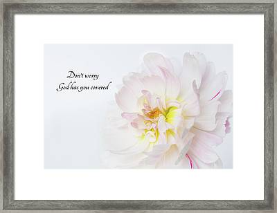 Framed Print featuring the photograph Don't Worry by Mary Jo Allen