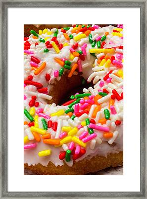Donut Close Up Framed Print by Garry Gay
