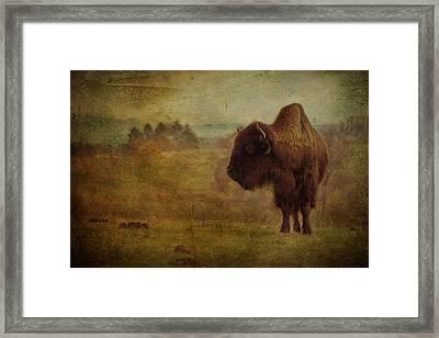 Doo Doo Valley Framed Print by Trish Tritz