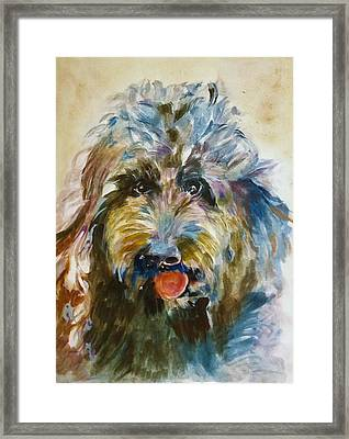 Doodle Framed Print by Khalid Saeed