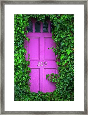 Door 229 Framed Print