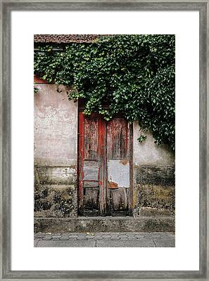 Framed Print featuring the photograph Door Covered With Ivy by Marco Oliveira