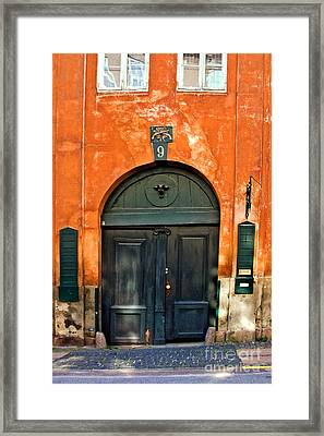 Door Framed Print